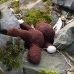 sad_bear